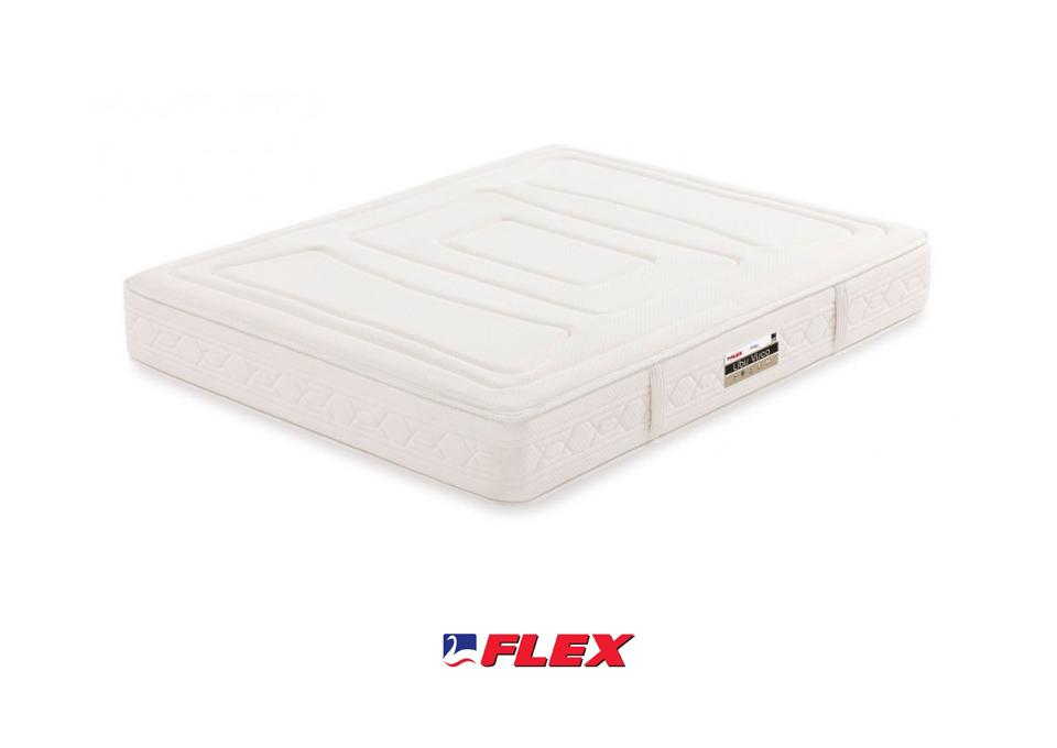 flexs2